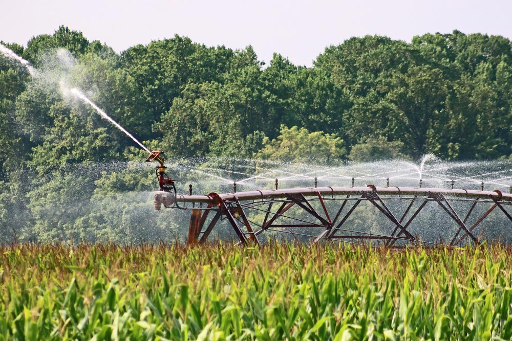 Early Warning System for safe reuse of treated wastewater for agricultural irrigation