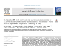 Comparative life cycle environmental and economic assessment ofanaerobic membrane bioreactor and disinfection for reclaimed waterreuse in agricultural irrigation: A case study in Italy